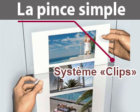 pince simple porte affiche (clips)